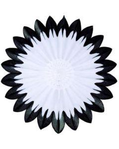 Auto Racing-Black & White Fan Burst