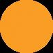 ADV Label Orange Day Glo Blank Circle - SL5DD05